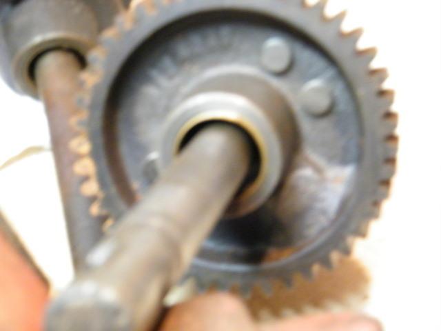 2008_0228LANETRANNYS10003.thumb.JPG.dbba