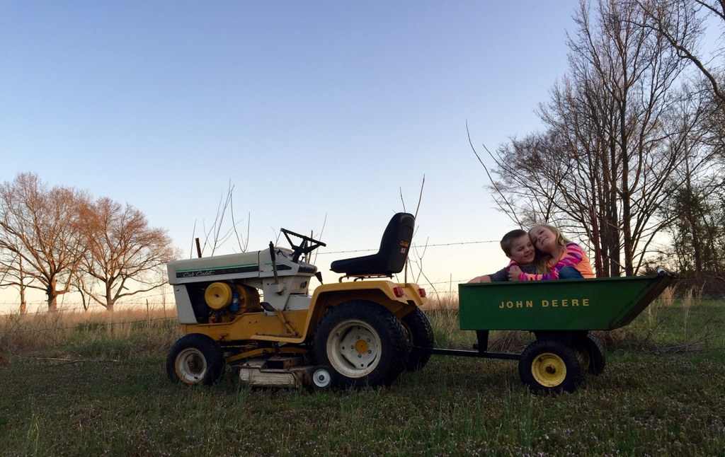 Cub Cadet Pulling Wheels : Can a wheel horse or cub cadet pull green cart other