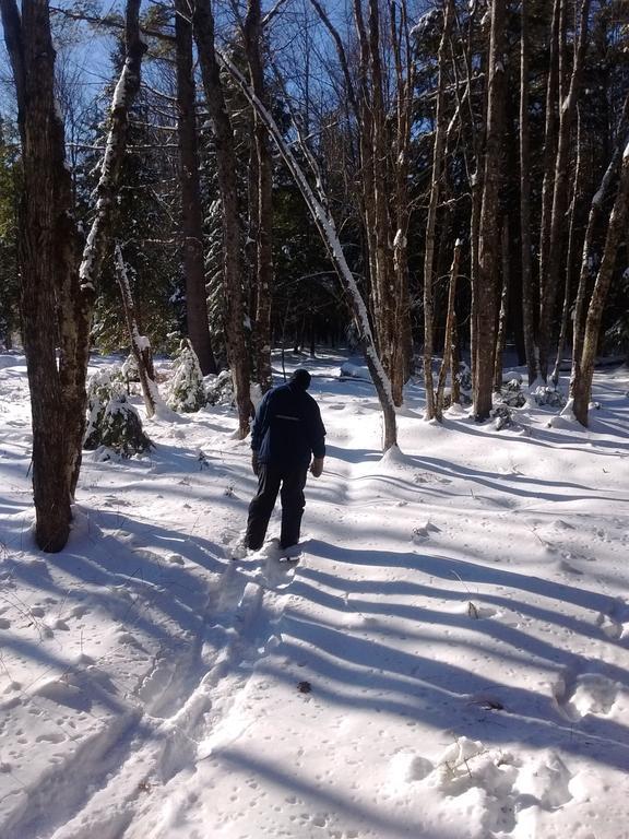 snowshoeing12_31.17-5.jpg.1e5275925156ac08177274678a52c4a1.jpg