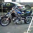 HarleyFX